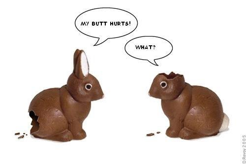 http://santiagodreaming.blogspot.com/uploaded_images/bunnies-750105.JPG